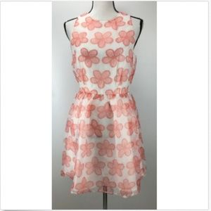 NWT BB DAKOTA Dress Size 6 Sleeveless Floral Print